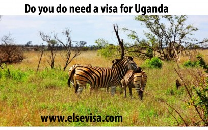 Uganda Visa: The simplest process to appeal for a visa